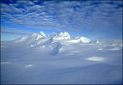 The North Pole Is On the Go, Again